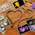 flower-beach-heart-summer-sea-photo-collage