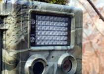 Are Trail Cameras Good For Home Security? – Read to Find Out
